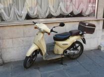 Scooter, Pisa, 2008